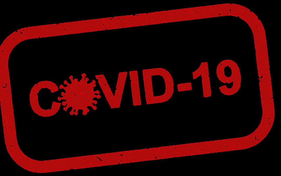 https://pixabay.com/pt/illustrations/covid-19-v%C3%ADrus-coronav%C3%ADrus-pandemia-4960254/