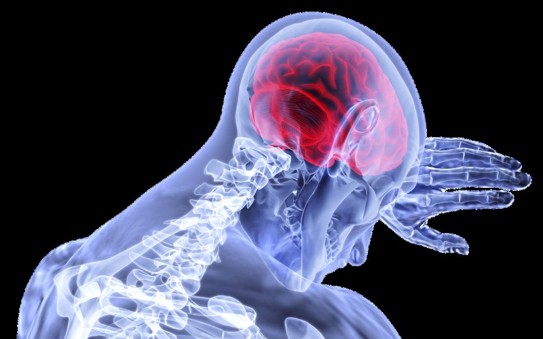 https://pixabay.com/pt/illustrations/c%C3%A9rebro-inflama%C3%A7%C3%A3o-curso-m%C3%A9dica-3168269/