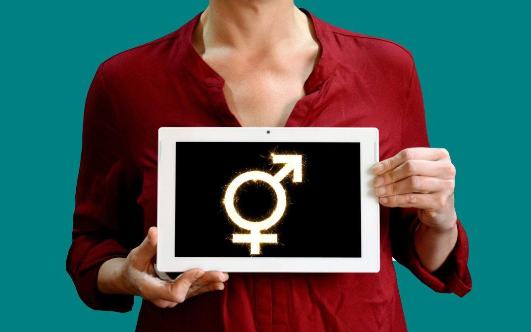 https://pixabay.com/pt/photos/g%C3%AAnero-igualdade-lgbt-s%C3%ADmbolo-5366084/