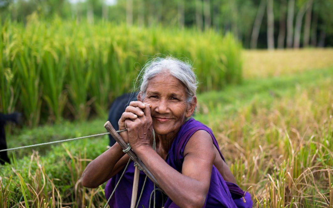 Agricultora com incapacidade parcial permanente tem direito a auxílio-doença